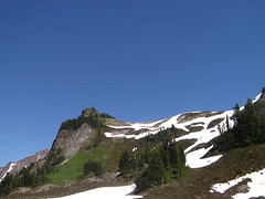 Yellow Aster Butte 071