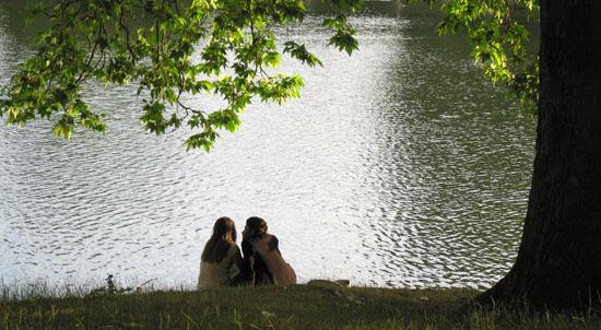 Entre Rosales: The Regent's Park