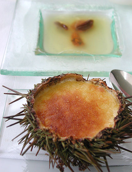 Sea urchin two ways