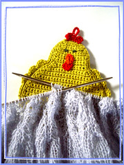 knitting chicken
