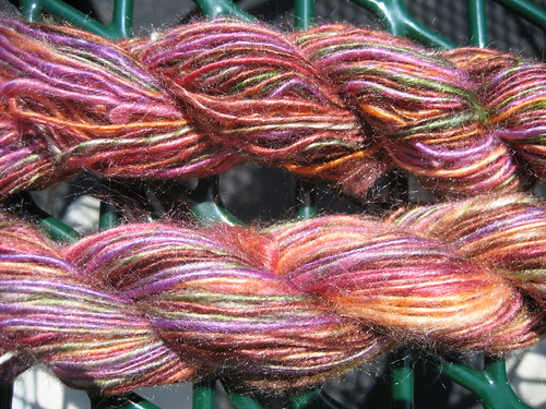 silk singles close up