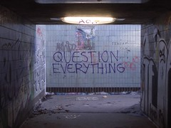Question Everything / Nullius in verba / Take nobody's word for it photo by dullhunk