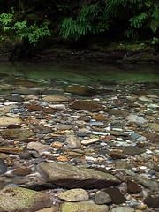 Butter Creek