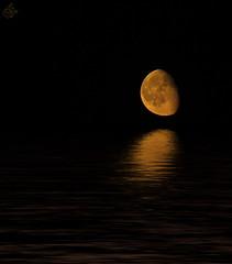 il profondo pensiero della sera...... photo by Ske'