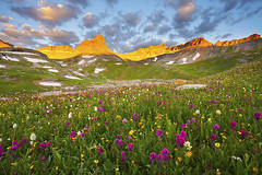 Wildflowers @ Upper Ice Lake Basin - Silverton, Colorado photo by Lightvision [光視覺]