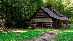 Wooden cottage in the forest..!! photo by Hussain M Ashoor