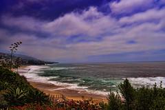 Laguna Beach photo by /\ltus