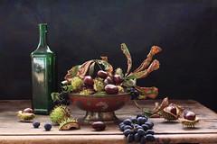 A Moveable Feast photo by panga_ua