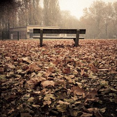 Autumn Fantasy : Banc de brume (Bank of Mist) photo by Gilderic Photography