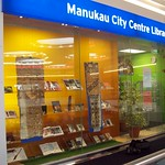 Manukau Library window display using the Fairfield cable & rod suspension system