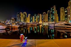 Marina Yacht Club photo by Najib Nasreddine