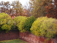 Ferrara: autumn on its ancient walls - Ferrara: autunno sulle sue antiche mura photo by SissiPrincess