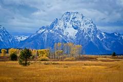 Grand Teton National Park, Wyoming photo by Carini Stefano