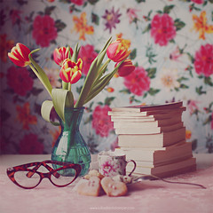 """""""Books are humanity in print."""" photo by www.juliadavilalampe.com"""
