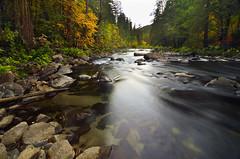 Merced River Fall Morning photo by David Shield Photography
