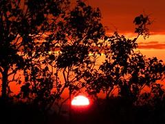 sun sun sun...... (explored) photo by nuframe