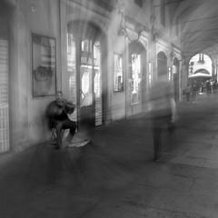 il violinista photo by Lorena Gazzotti