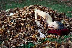 Mon lit d'automne. photo by Laureos