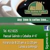 6383296361_1cf5a889c3_t