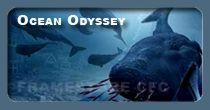 Ocean_Odyssey