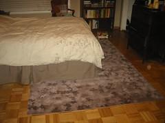 BedroomRug_June2006 006