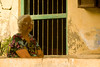 Ranwar Village - Heritage under threat