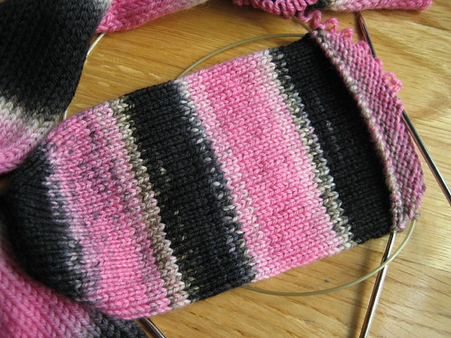 Pink Panther sock - in progress