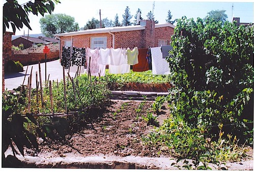 Lesotho Urban Ag
