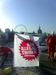 Ban illegal timber. Greenpeace