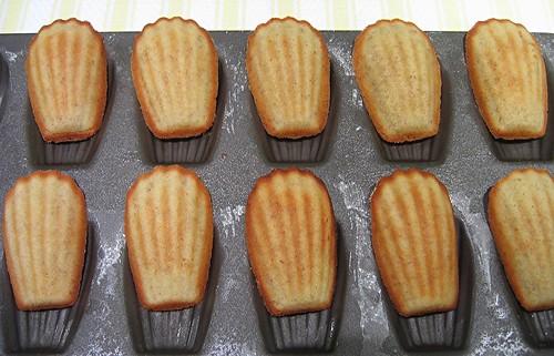 almond madeleine 2