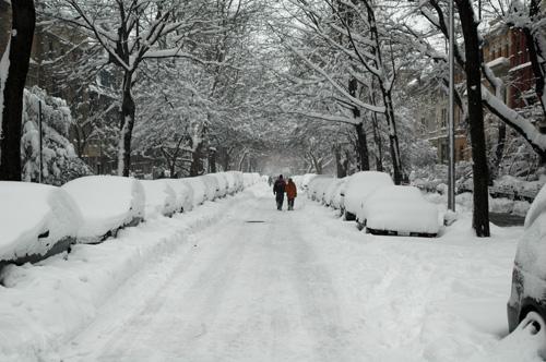 Feb 12 Snow
