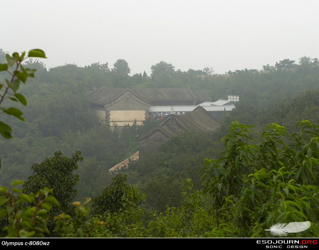八月外拍北京香山 之四 – 植物、风景小品