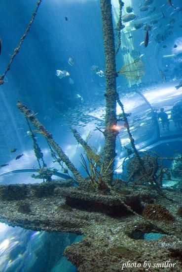 仿甲板船桅與海底隧道共構的景象