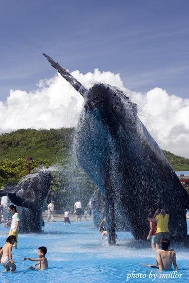 海生館園內露天鯨豚造型水池的親子嬉水人潮