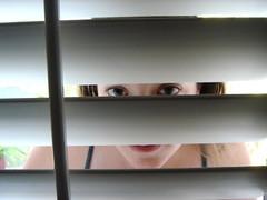 peeking thru blinds-8-22-06