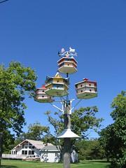 martin houses