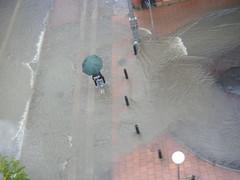 översvämningPICT0001