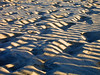 Rehoboth Sand