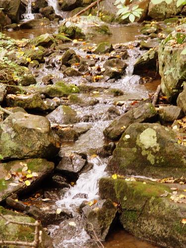 Stream feeding into the gorge
