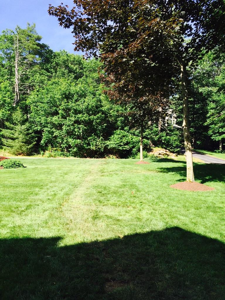 Irrigation Services Atlantic Lawn Care Portland Maine
