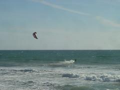 Scotts Creek Beach - Kite Surfer