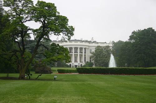 Белый дом / White House
