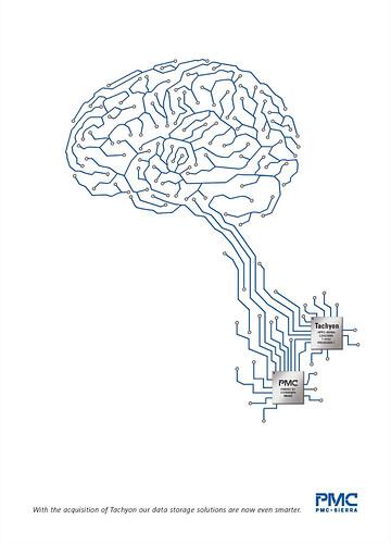 Line Art Brain : Line art brain