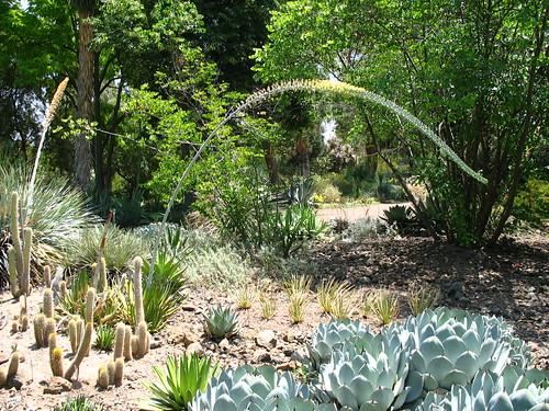 Garden view one