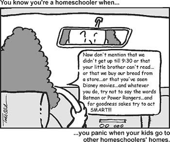 homeschoolworries