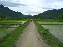 Arriving in Mai Chau
