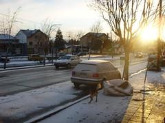 Nieve calle