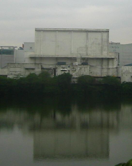 Cubao Pond 2