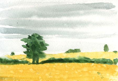rainpicture