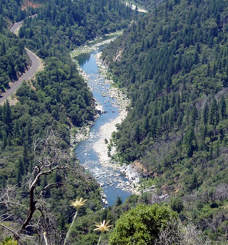 feather river1
